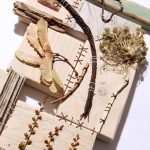 Patchwood Samplers: Natural Collections workshop